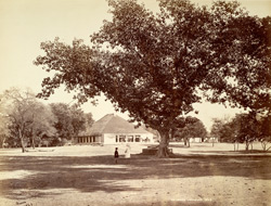 An Indian compound [Ambala].